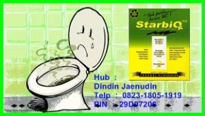 Sedot WC Mampet